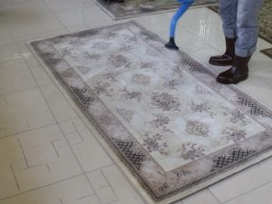 RV Carpet Cleaning